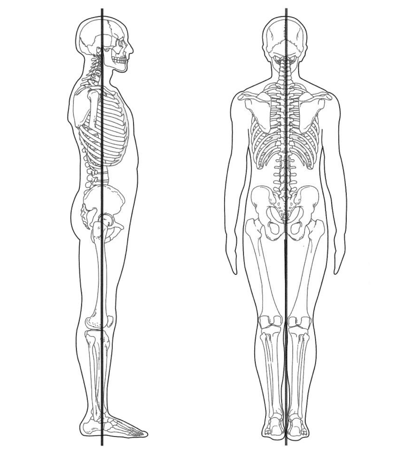 For Proper posture, your body should align