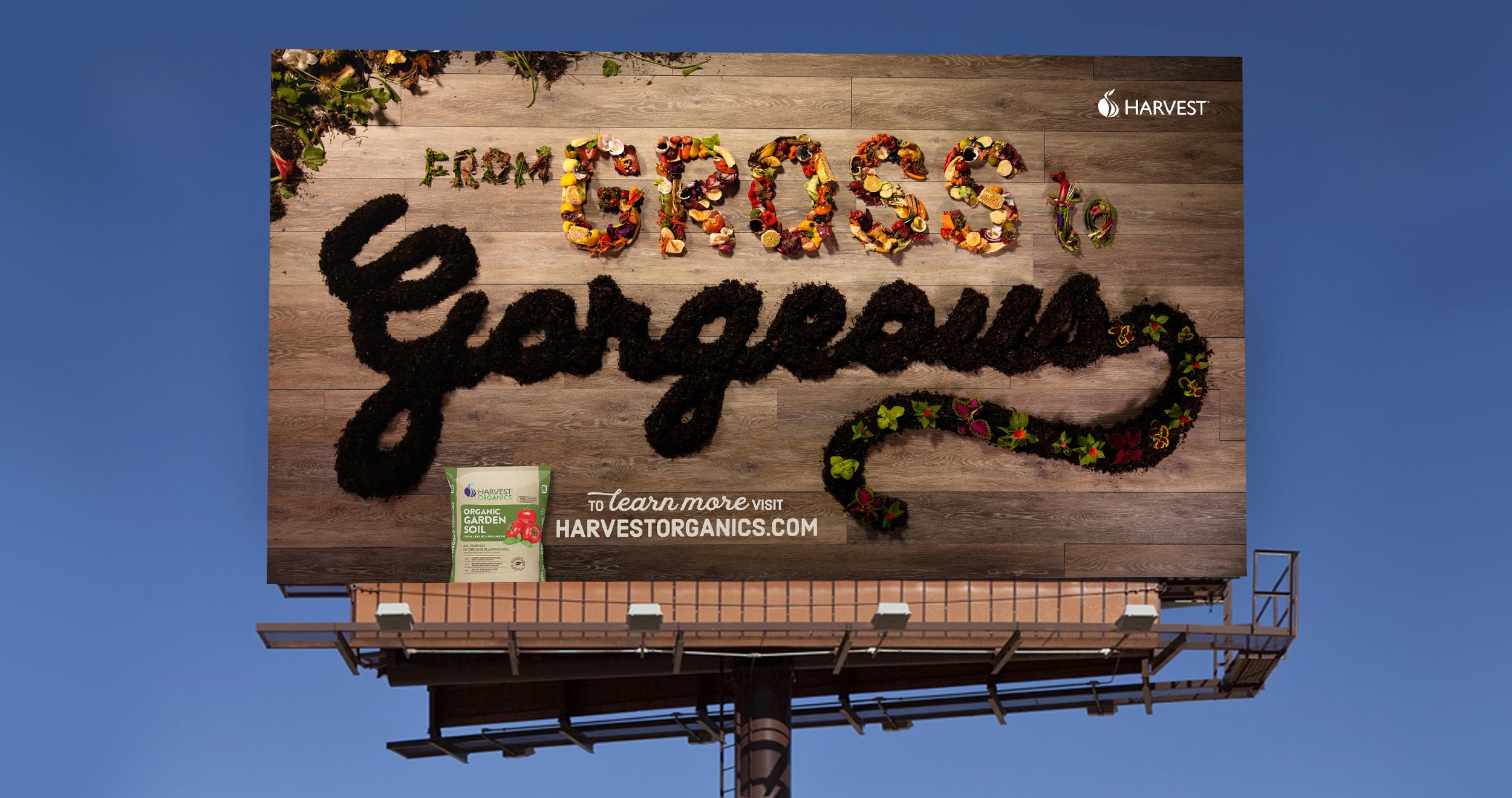 HARVEST billboard.jpg
