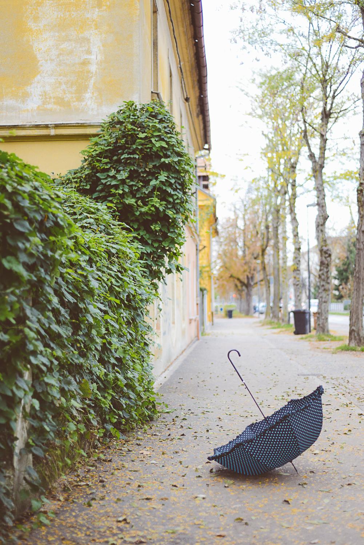 Umbrella_foto_Mankica_Kranjec.jpg