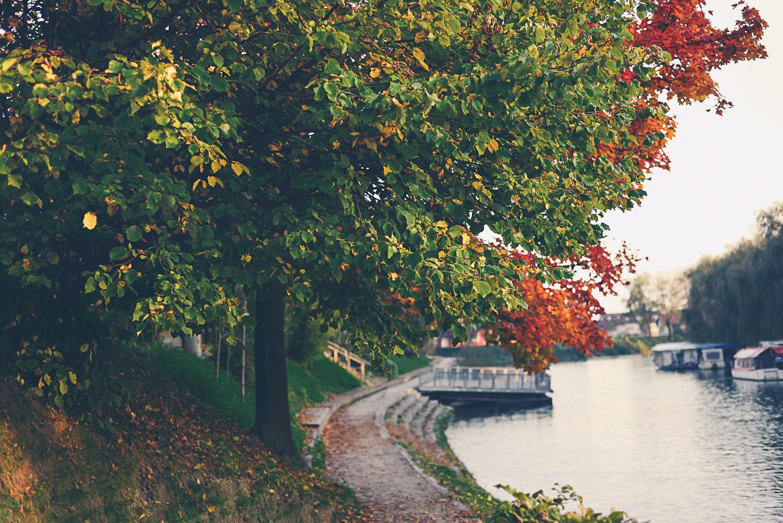Autumn_time_foto_Mankica_Kranjec.jpg