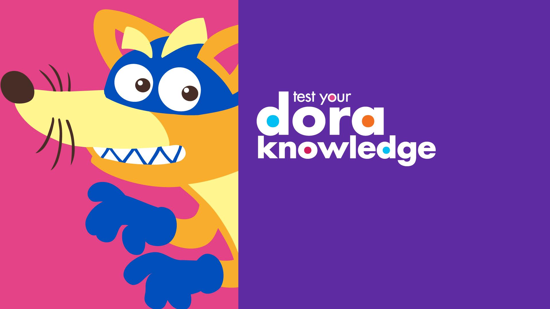 SuperFanSunday_DORA_Swiper_knowledge.jpg