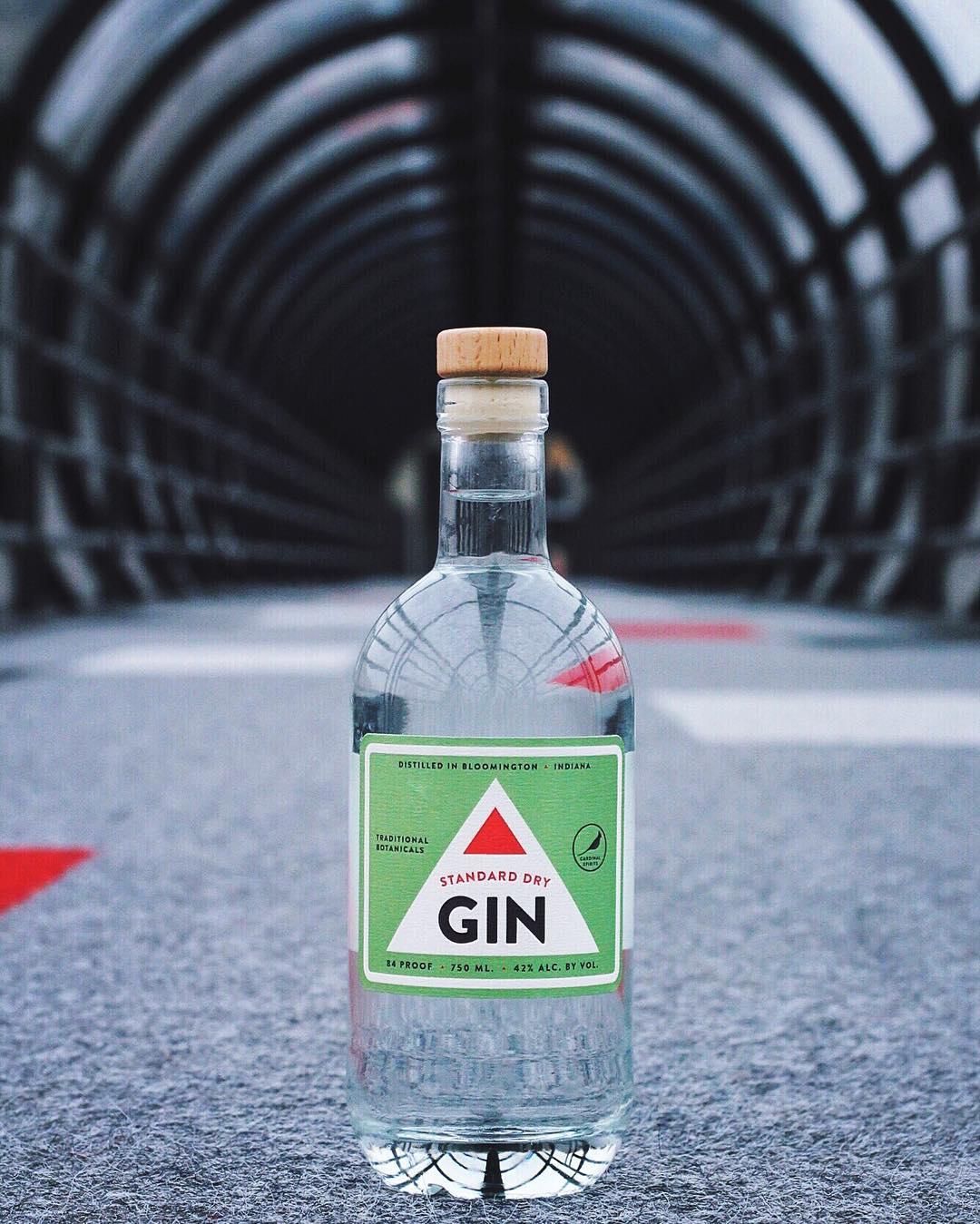 gin-tunnelvision-troycarpenter.jpg