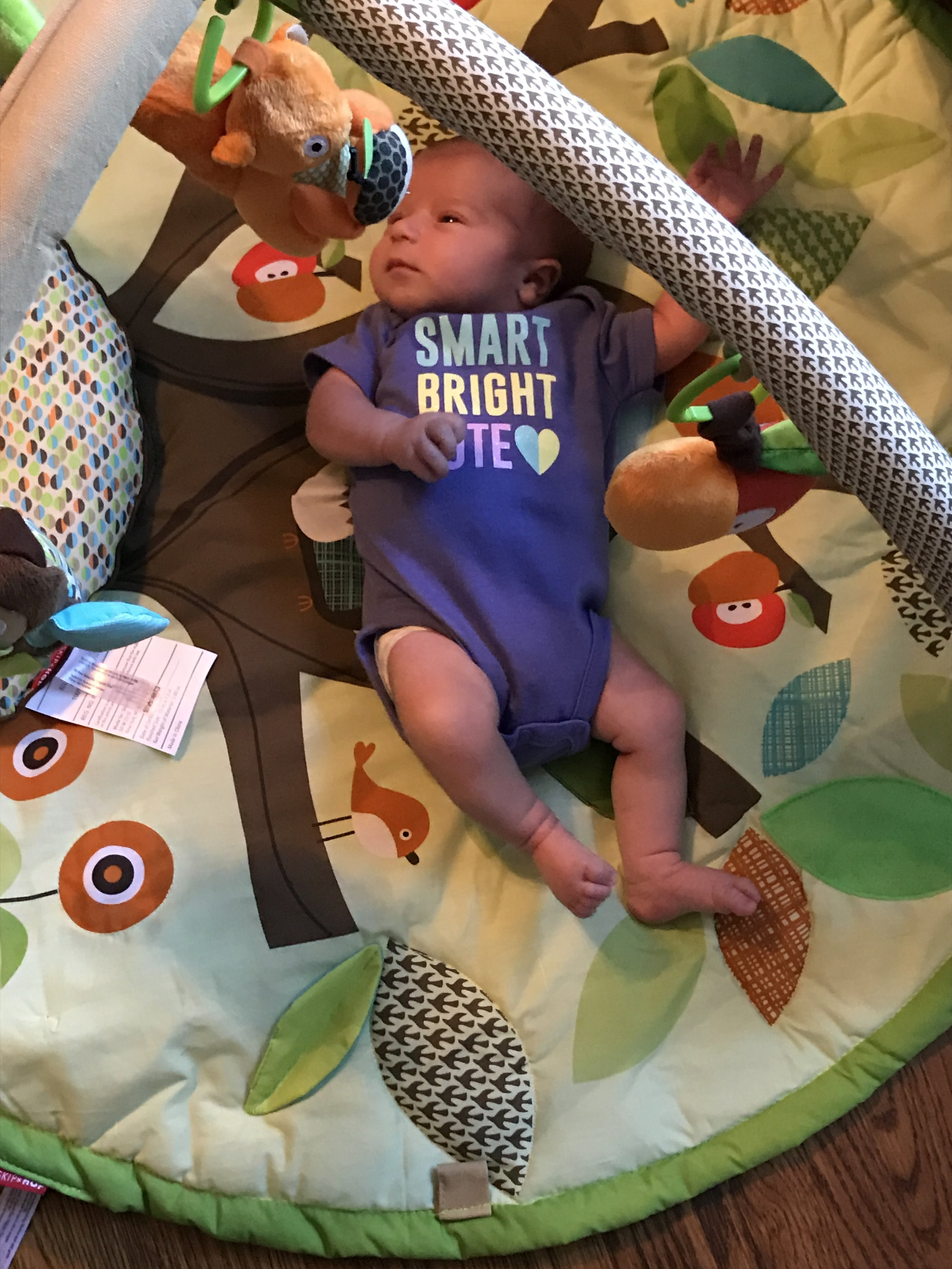 Enjoying her activity mat for the first time at home!