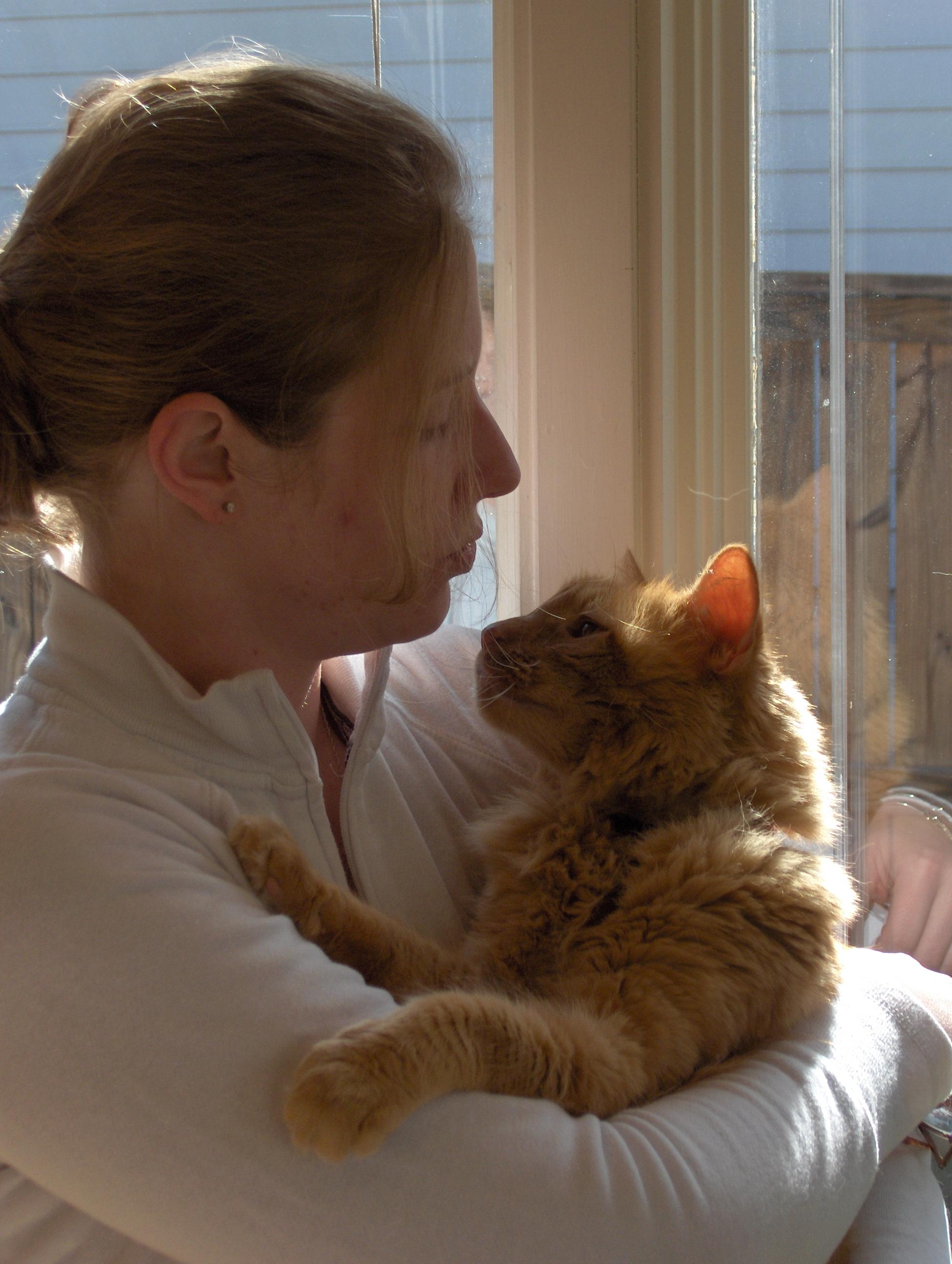 trianglevrh-triangle-veterinary-referral-hospital-tvrh-woman-holding-orange-cat.JPG