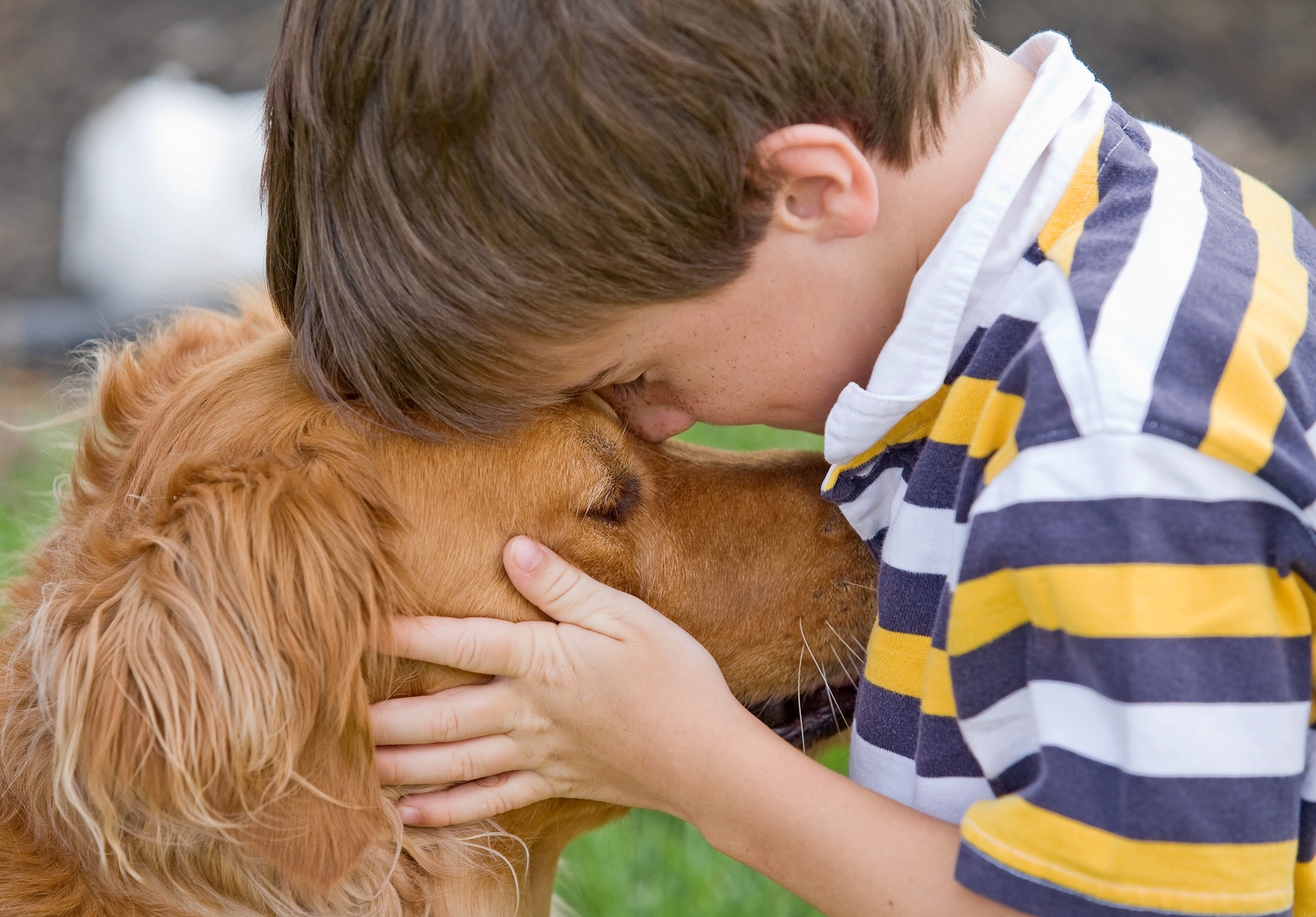 bigstock-Little-Boy-And-Dog-4895050.jpg