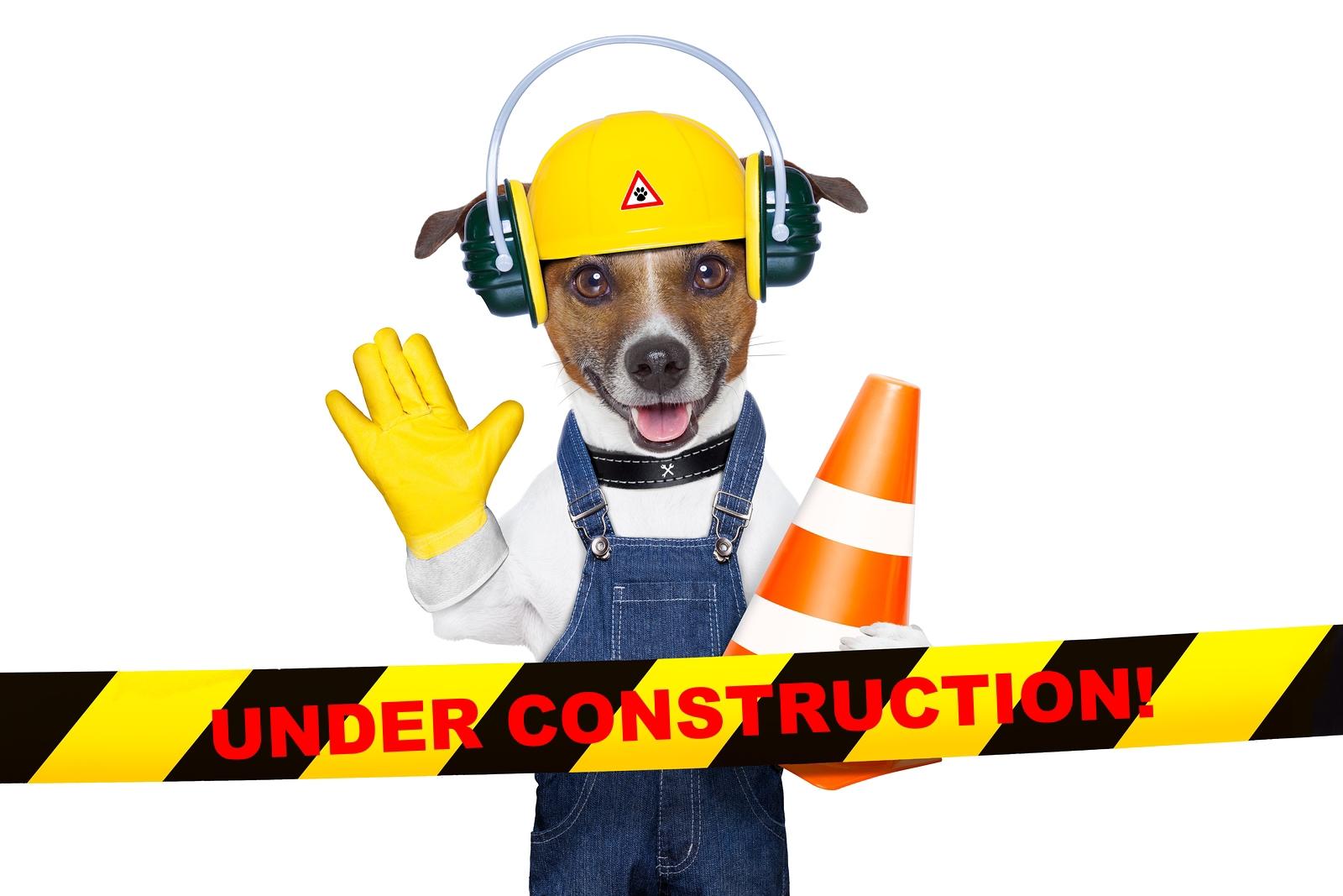bigstock-Under-Construction-Dog-47595958.jpg