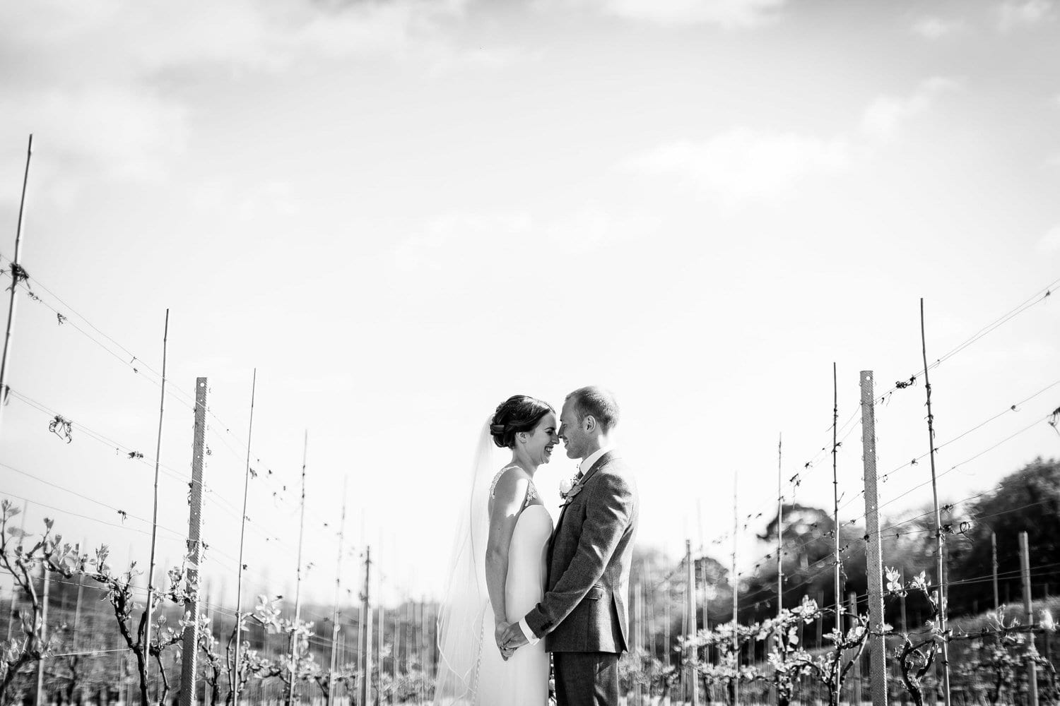 bride and groom holding each other in vineyard