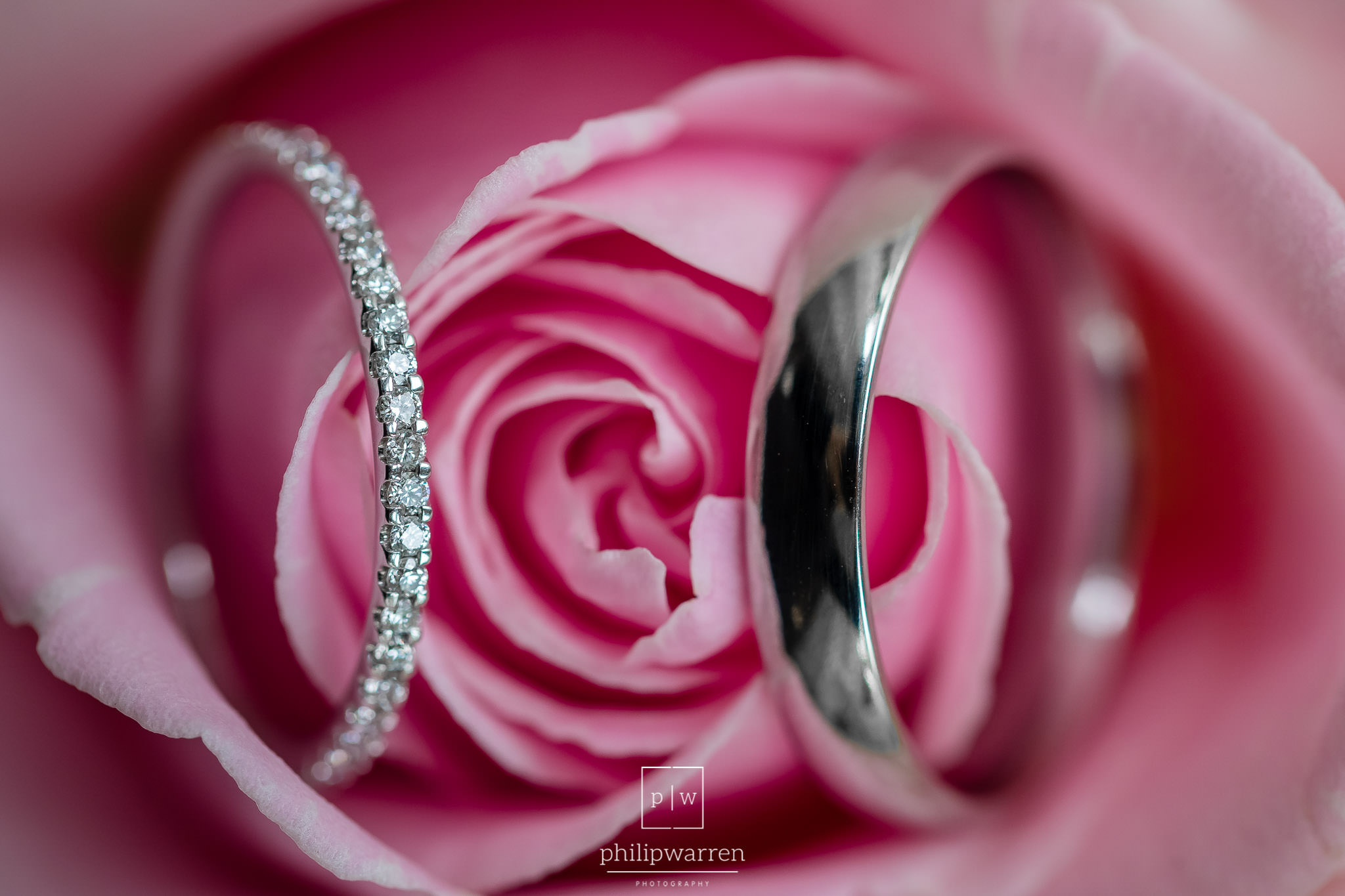 macro photo of weddings rings in a pink rose