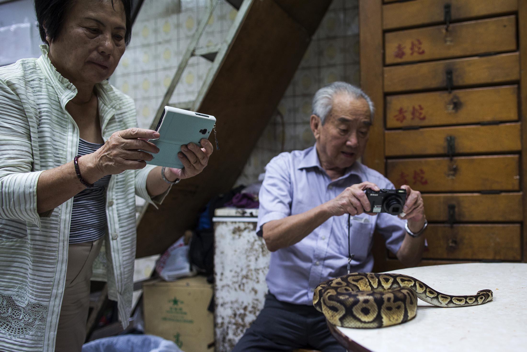 Snake15.jpg