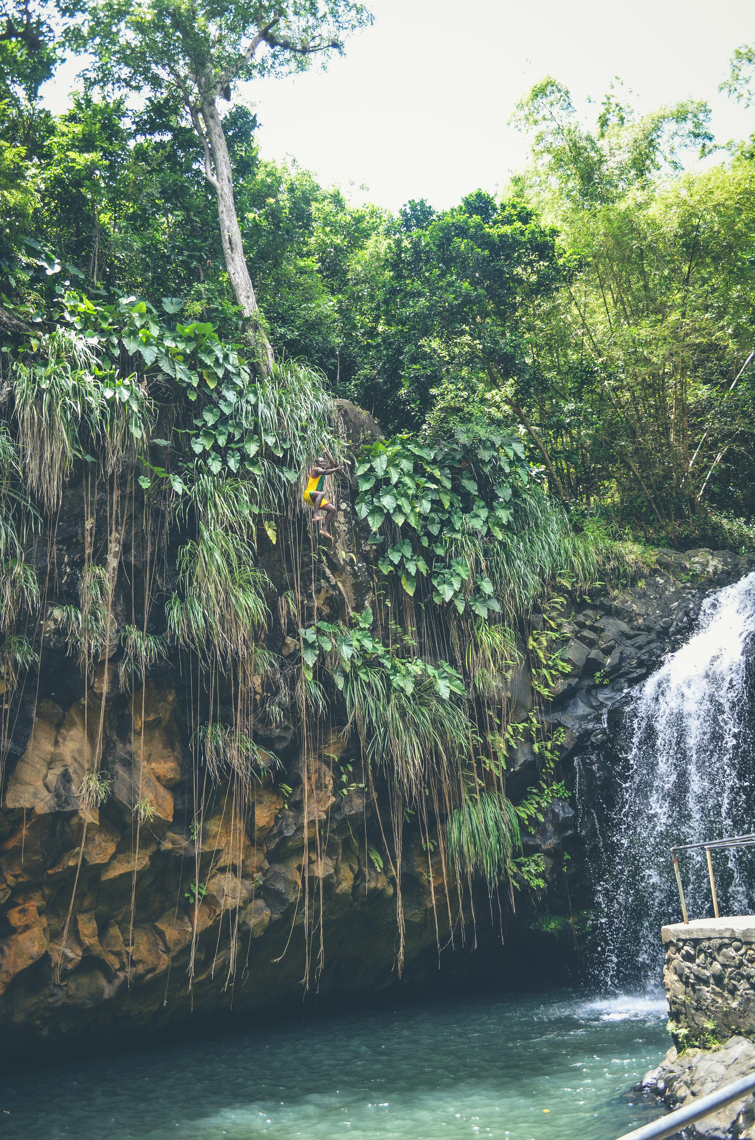 Jumping Annandale Falls, Grenada.