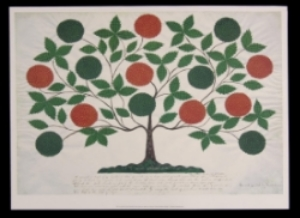"""Gift Drawing"" of The Tree of Life"