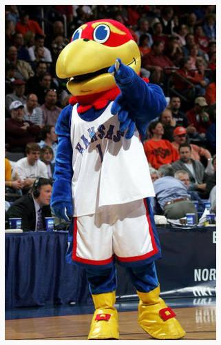 Jayhawk mascot from the University of Kansas (photo source: about.com)
