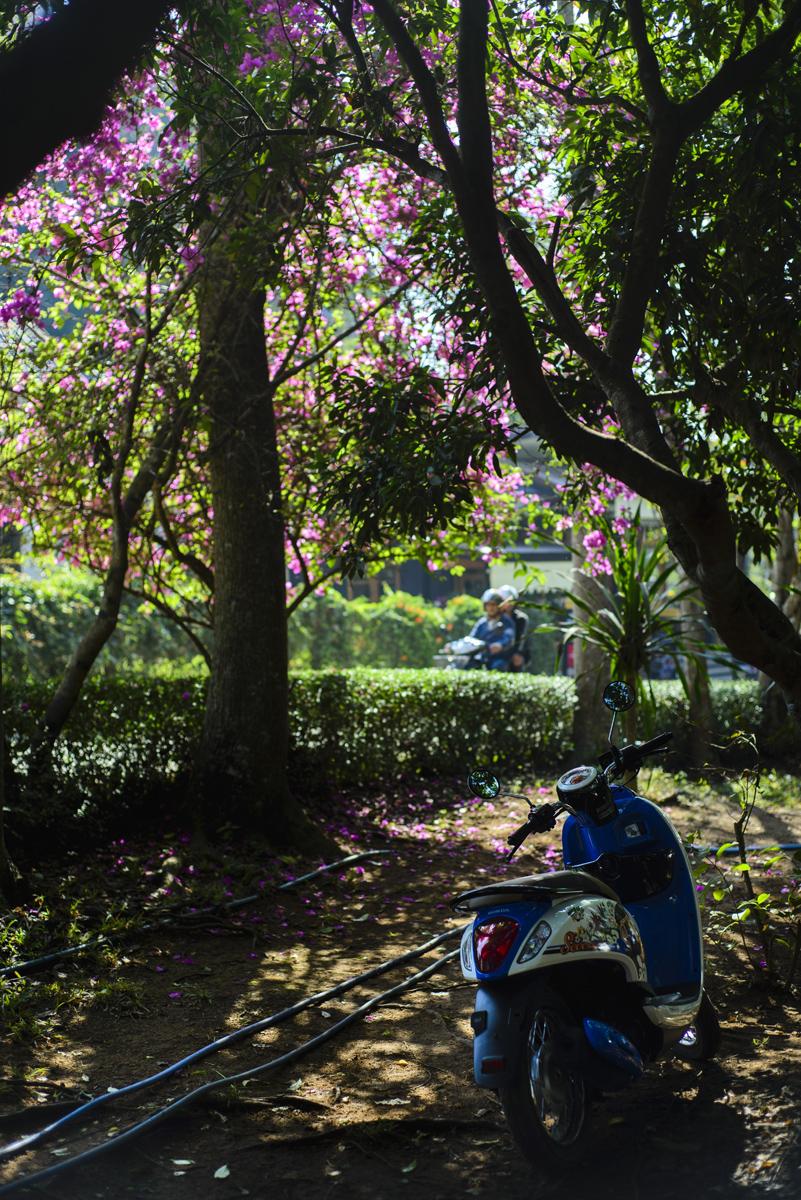 Thailand_Blog_021.jpg