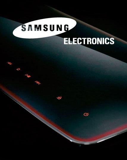 Samusng Electronics 2008 Annual Report