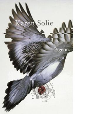 Pigeon  by Karen Solie