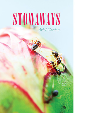 Ariel Gordon's  Stowaways