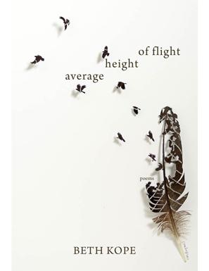average_height_of_flight.jpg