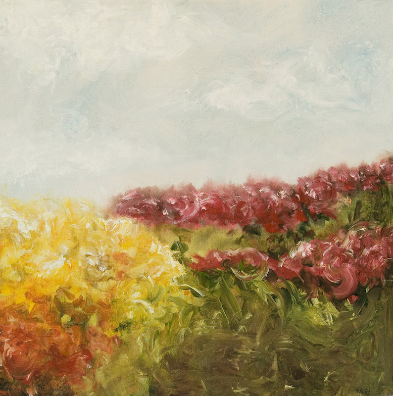 Tracey-J-Marshall-Landscapes-Flower-Focused-0849.jpg