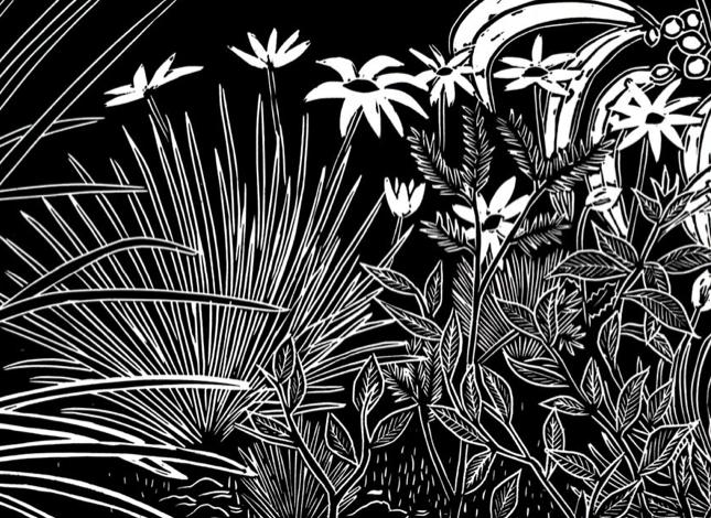 2013 Syrah Mars & Rous - Lino Print of Kaiser Stuhl National Park