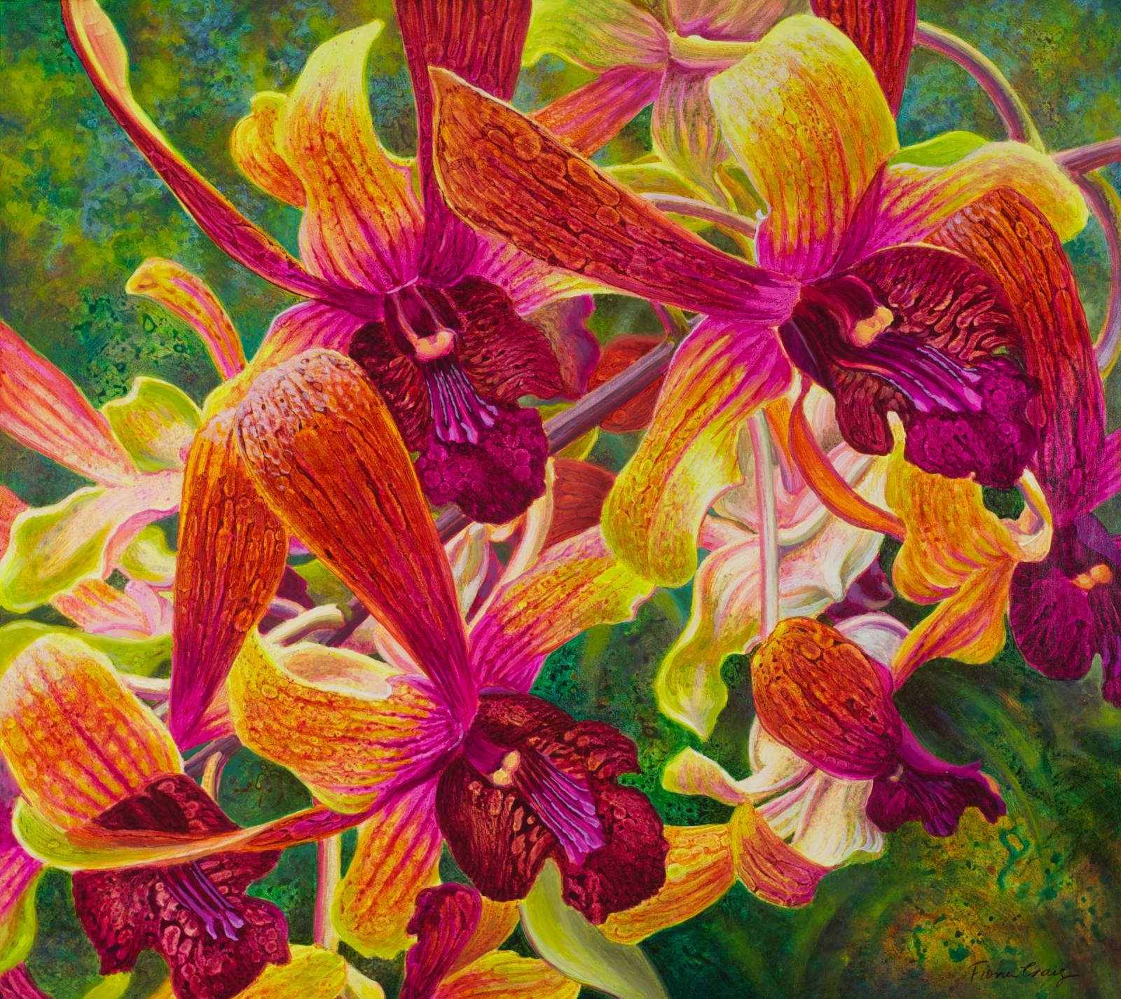 Fiona Craig 'Dance of the Dendrobiums' 91cm x 102cm #13841