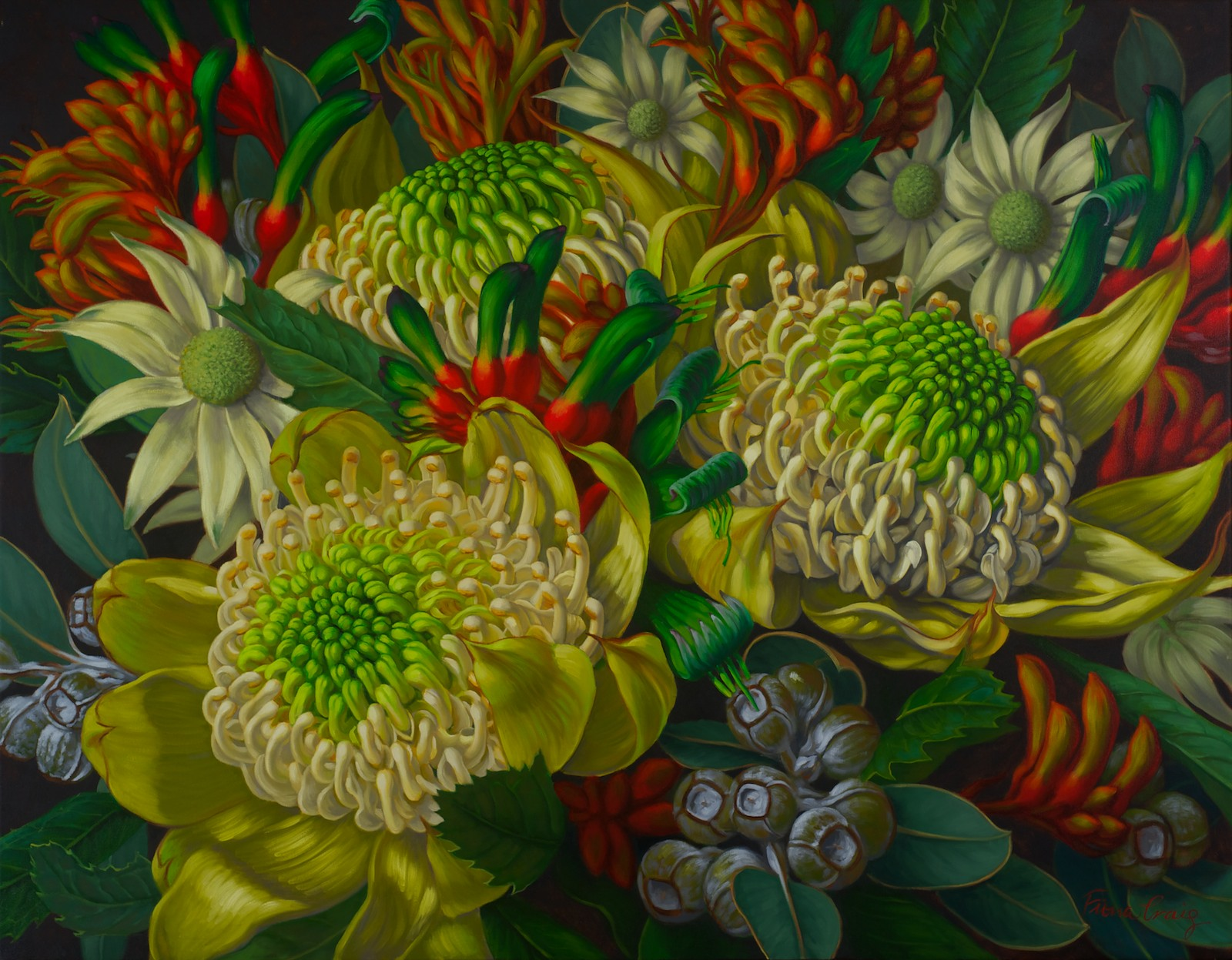 Fiona Craig 'Waratahs, Flannel Flowers & Kangaroo Paws 106cm x 137cm #13840