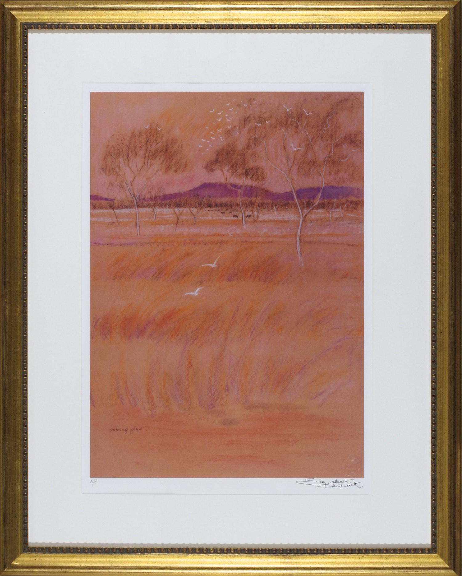 #12941 ED16. Elizabeth Durack. Evening Glow. 84cm x 67cm. $780