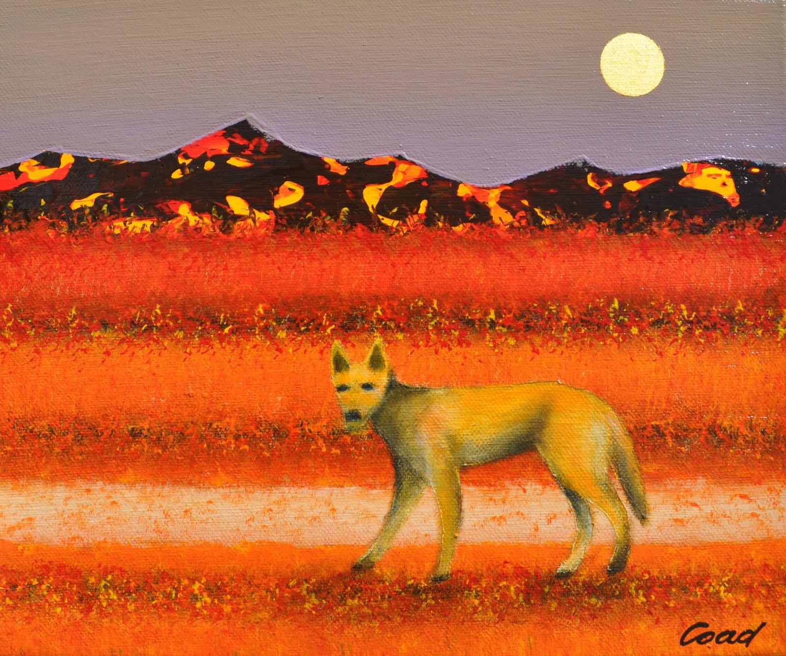 Peter Coad 'Dingo and Moon' 25cm x 30cm #14538