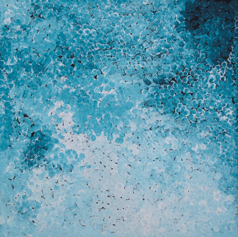 Polly Kngale 'Bush Plum' Acrylic on Linen 90cm x 90cm #15076