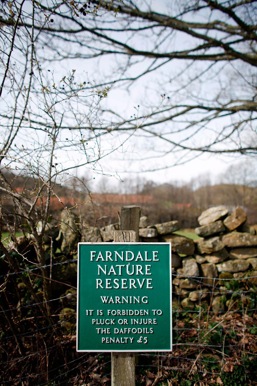 farndale-245.jpg