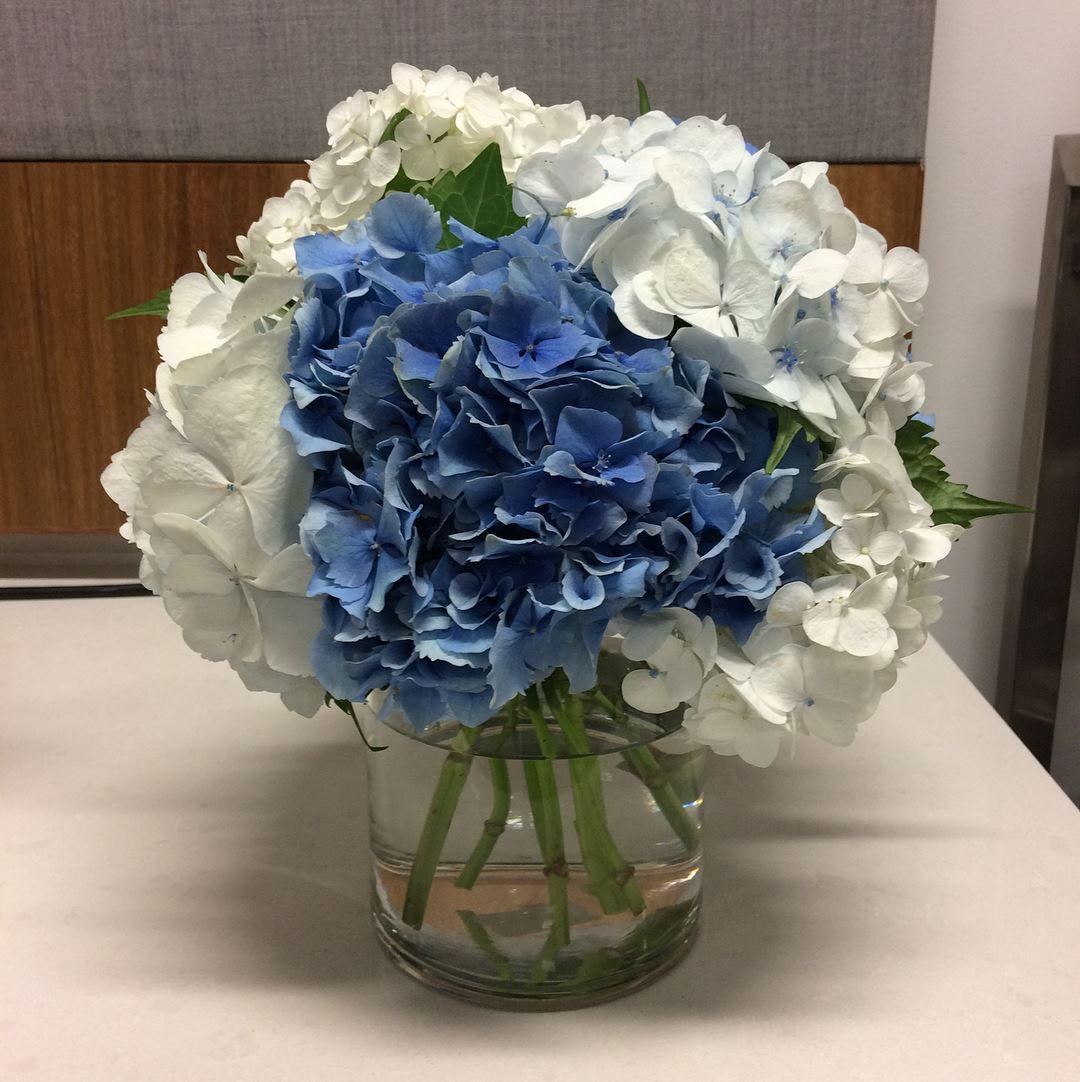 Hydrangea floral centerpiece corporate arrangement.jpg
