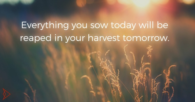 Every-day-your-sowing-for-your-harvest-tomorrow..jpg