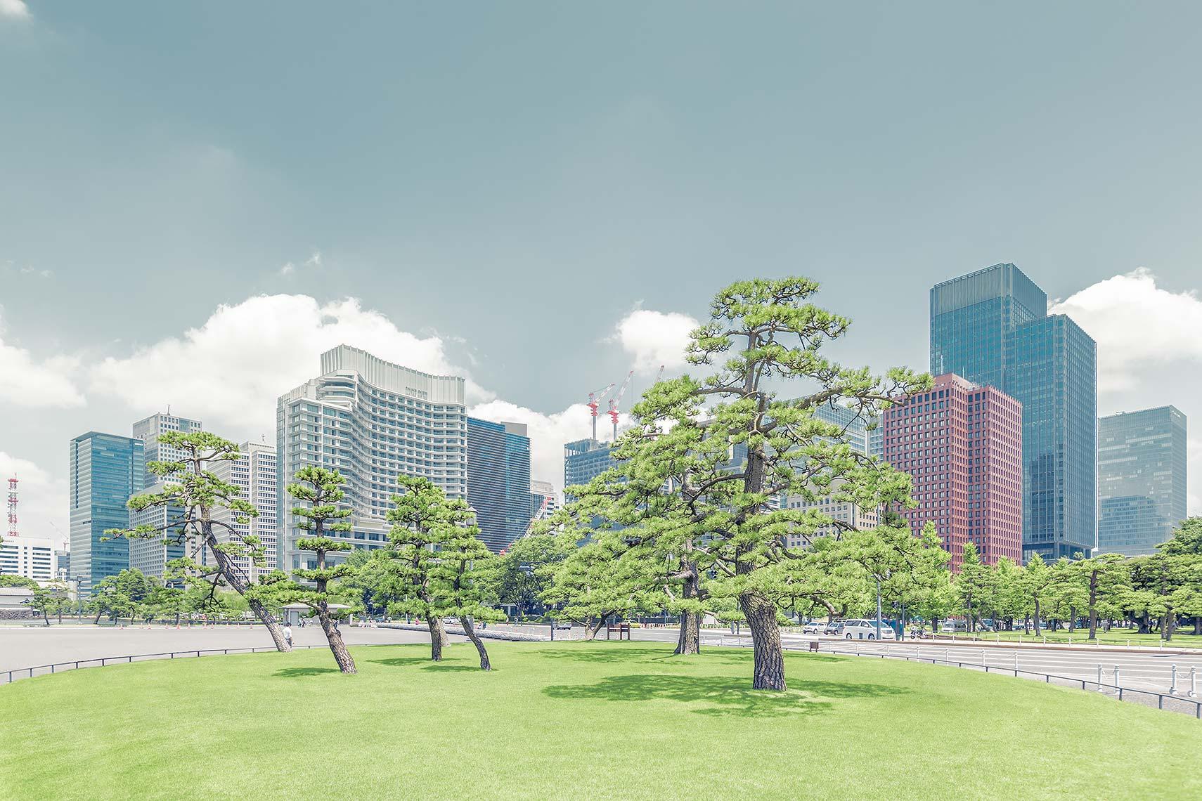 Tokyo_City_Tree_V2.jpg