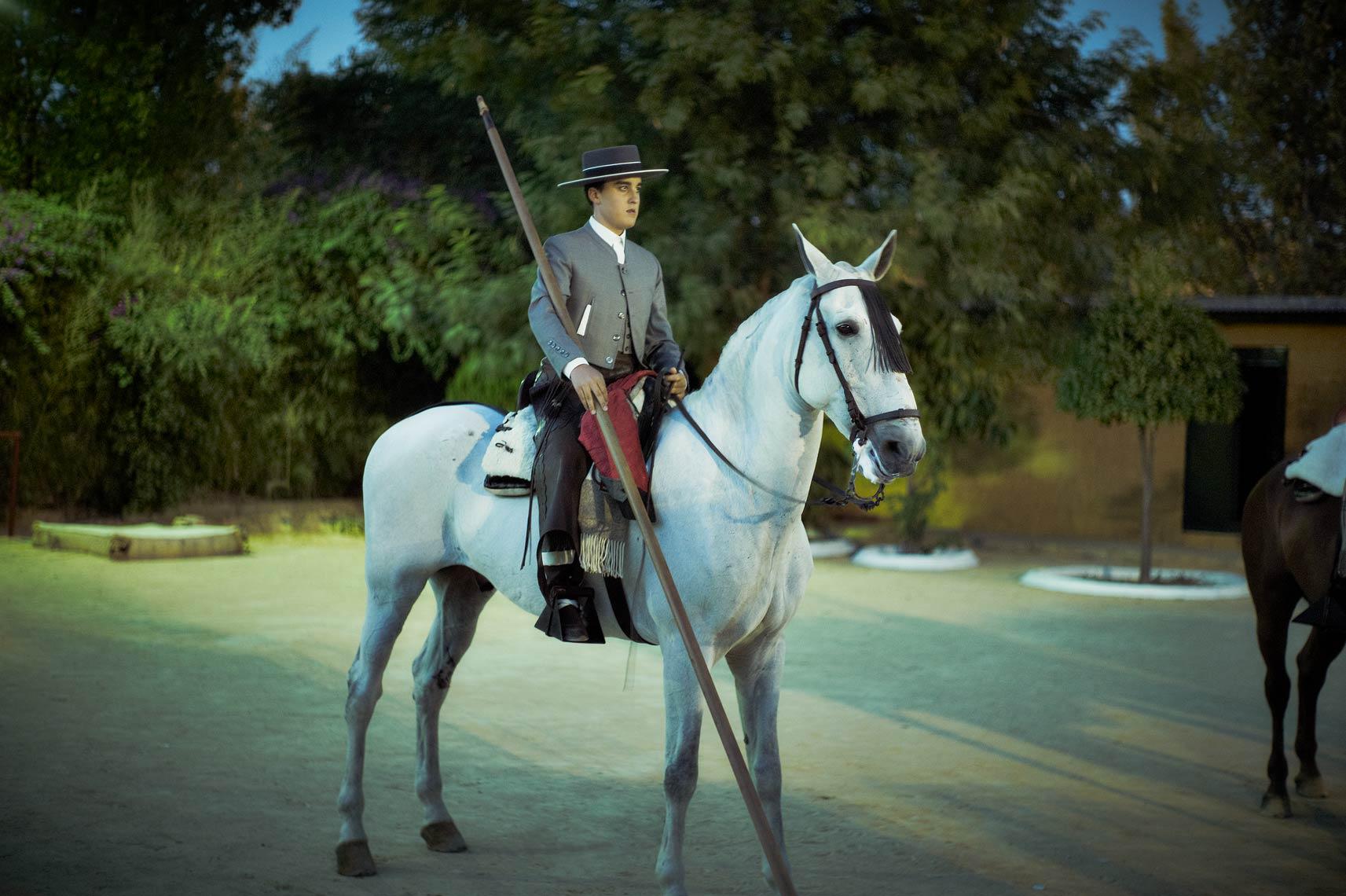 HorseBoy2.jpg