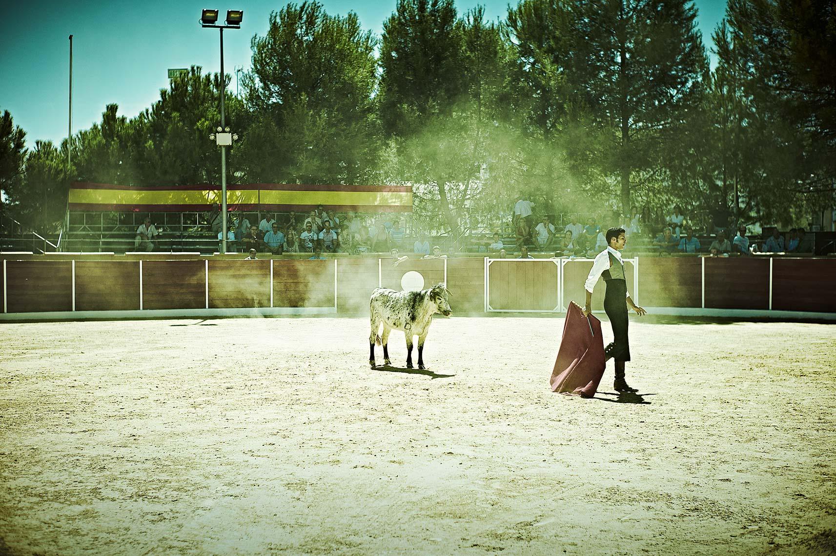 Bullfight3.jpg