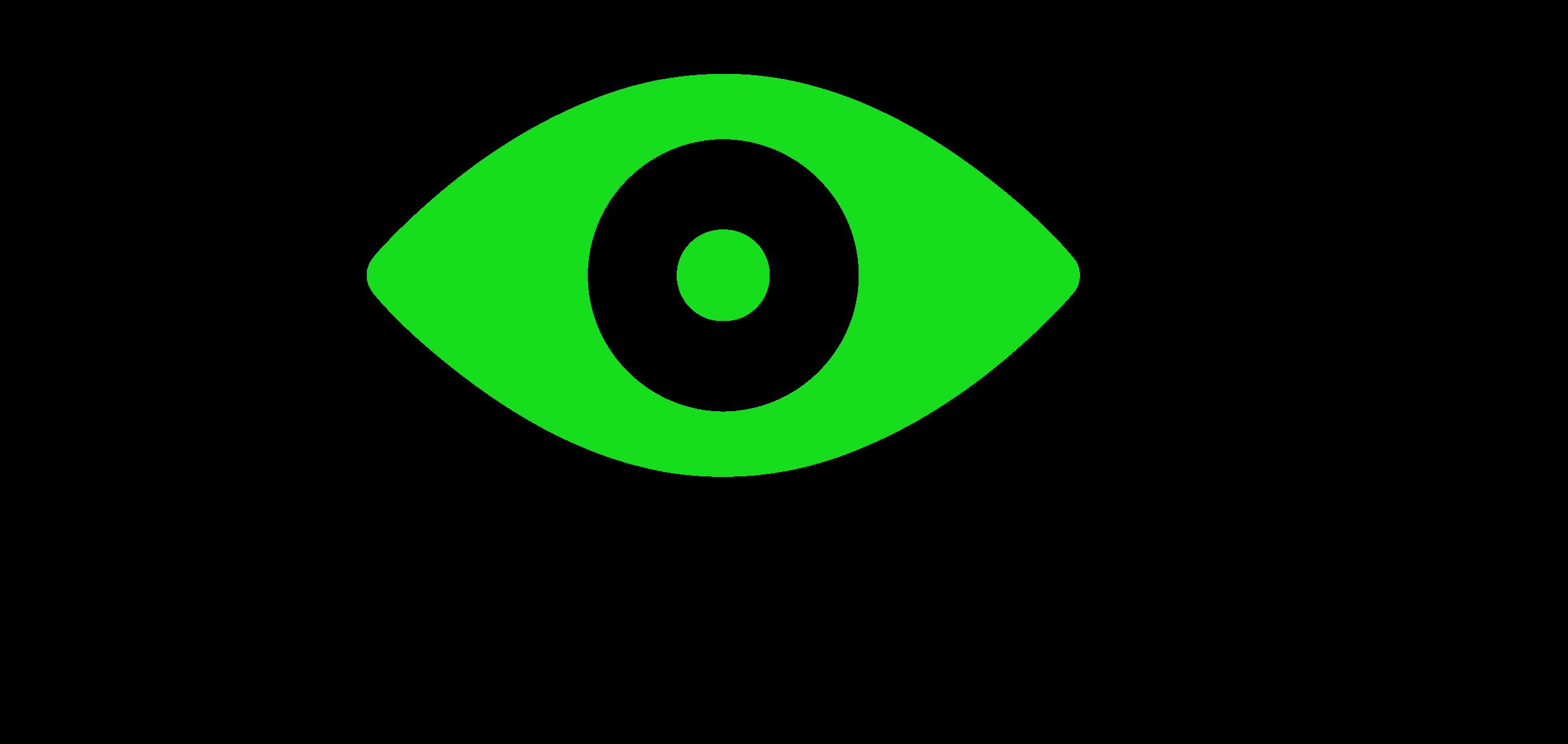Experience Surveillance -logo.png