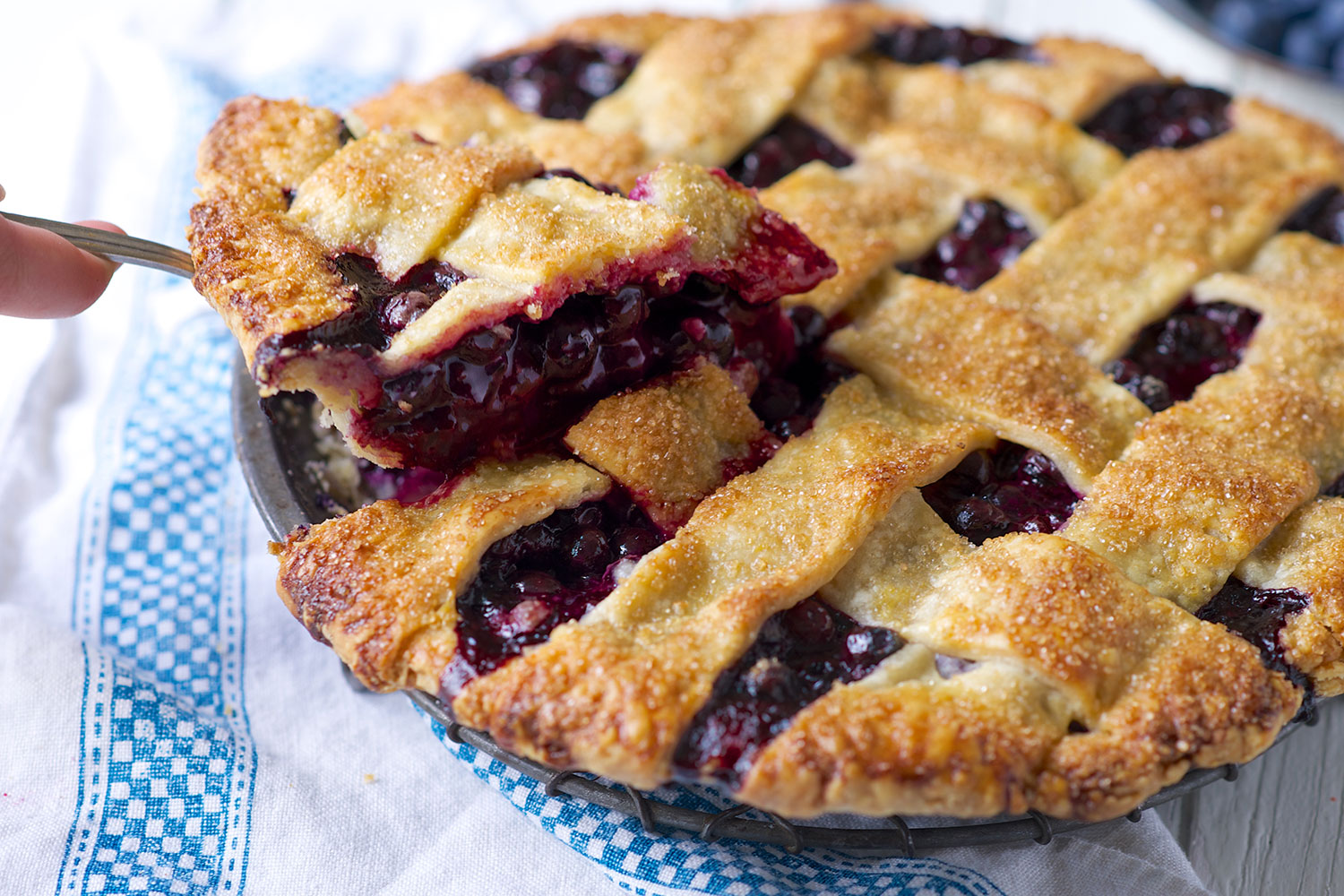 blue-ribbon-blueberry-pie_0715.jpg