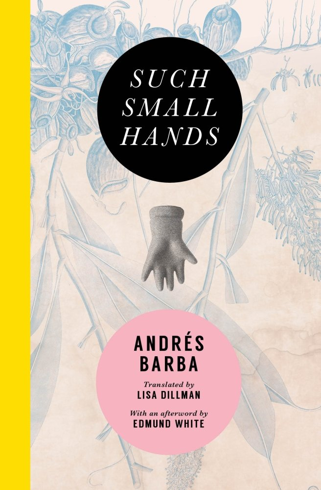 Such Small Hands  by  Andrés Barba  tr.  Lisa Dillman  (Transit Books, April 2017)  Reviewed by  Mark Haber