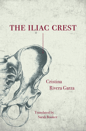 The Iliac Crest  by  Cristina Rivera Garza  tr.  Sarah Booker  (Feminist Press, Oct. 2017)   Reviewed by Craig Epplin