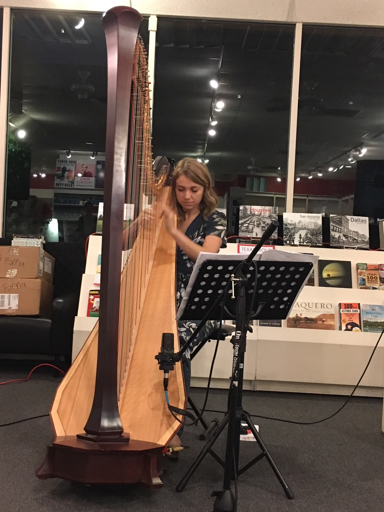 "Stephanie Gustafson performs ""Fall"" for harp and electronics by Kaija Saariaho"