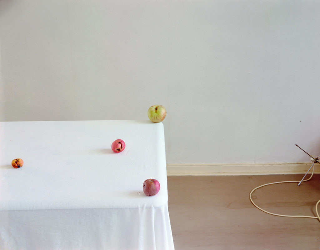"Laura Letinsky, ""Untitled #5,""  Hardly More Than Ever  series, 1999, 20"" x 24"", Archival Ink Print"