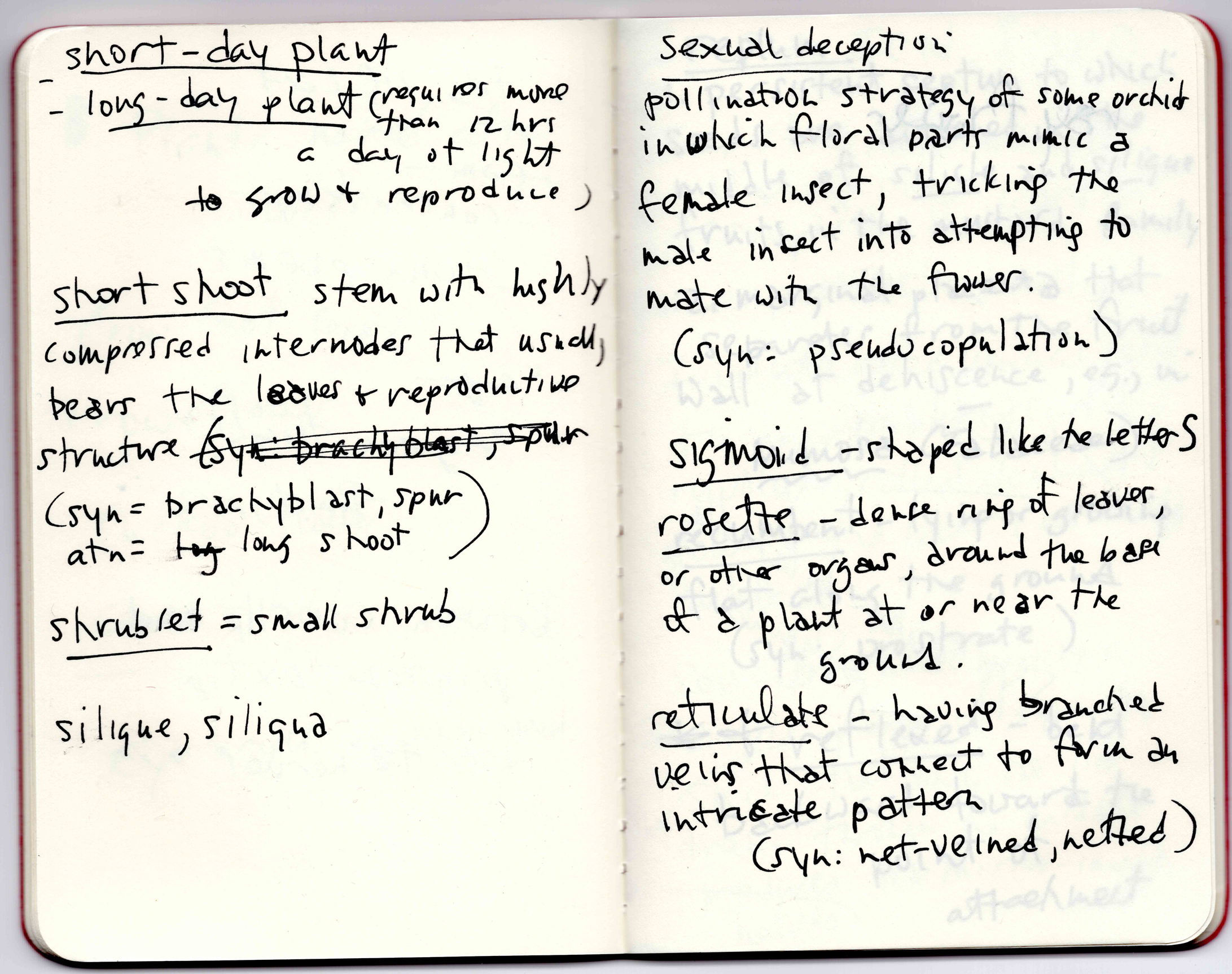 Notes toward  Garden Physic.  Courtesy Sylvia Legris.