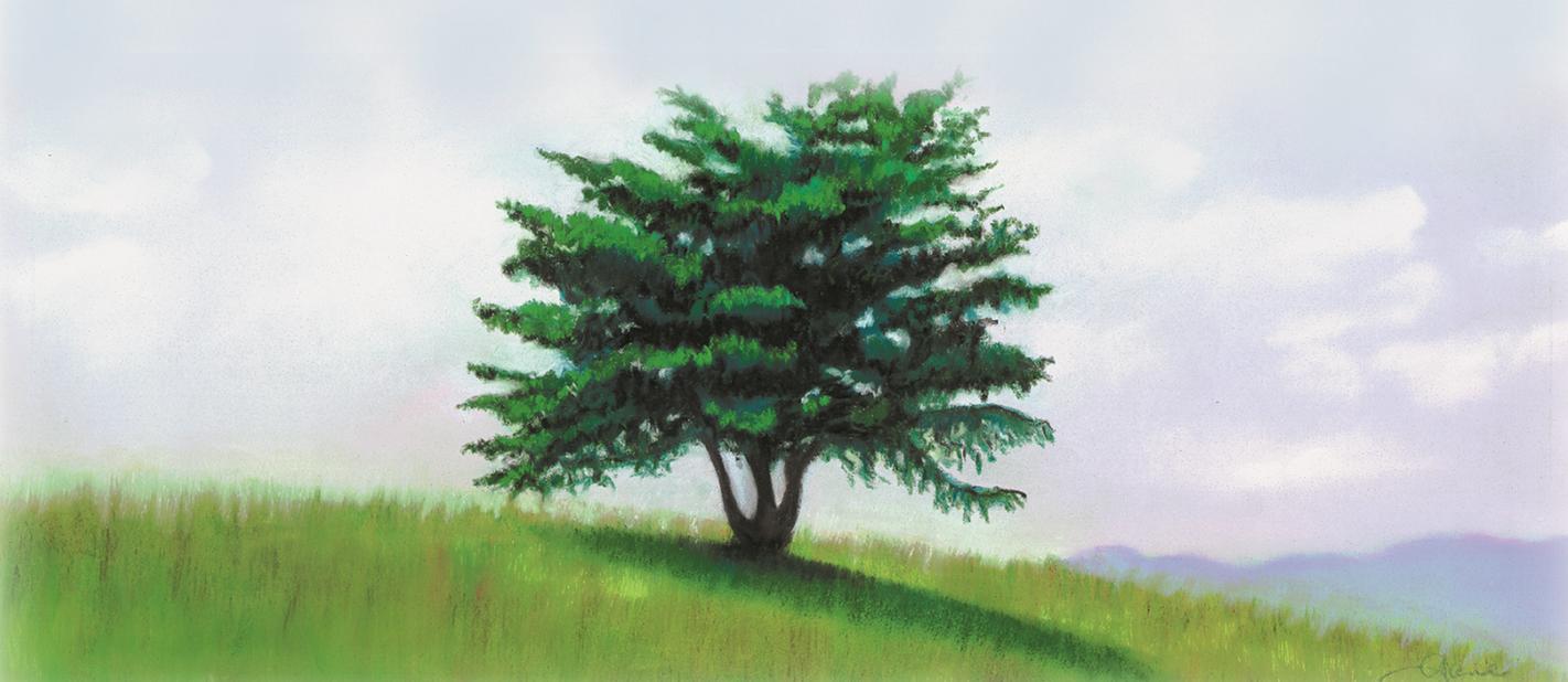 """""""Lone Tree""""pastel, 12x5"""""""