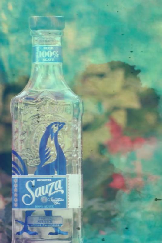 history of sauza - Art Director - Sauza
