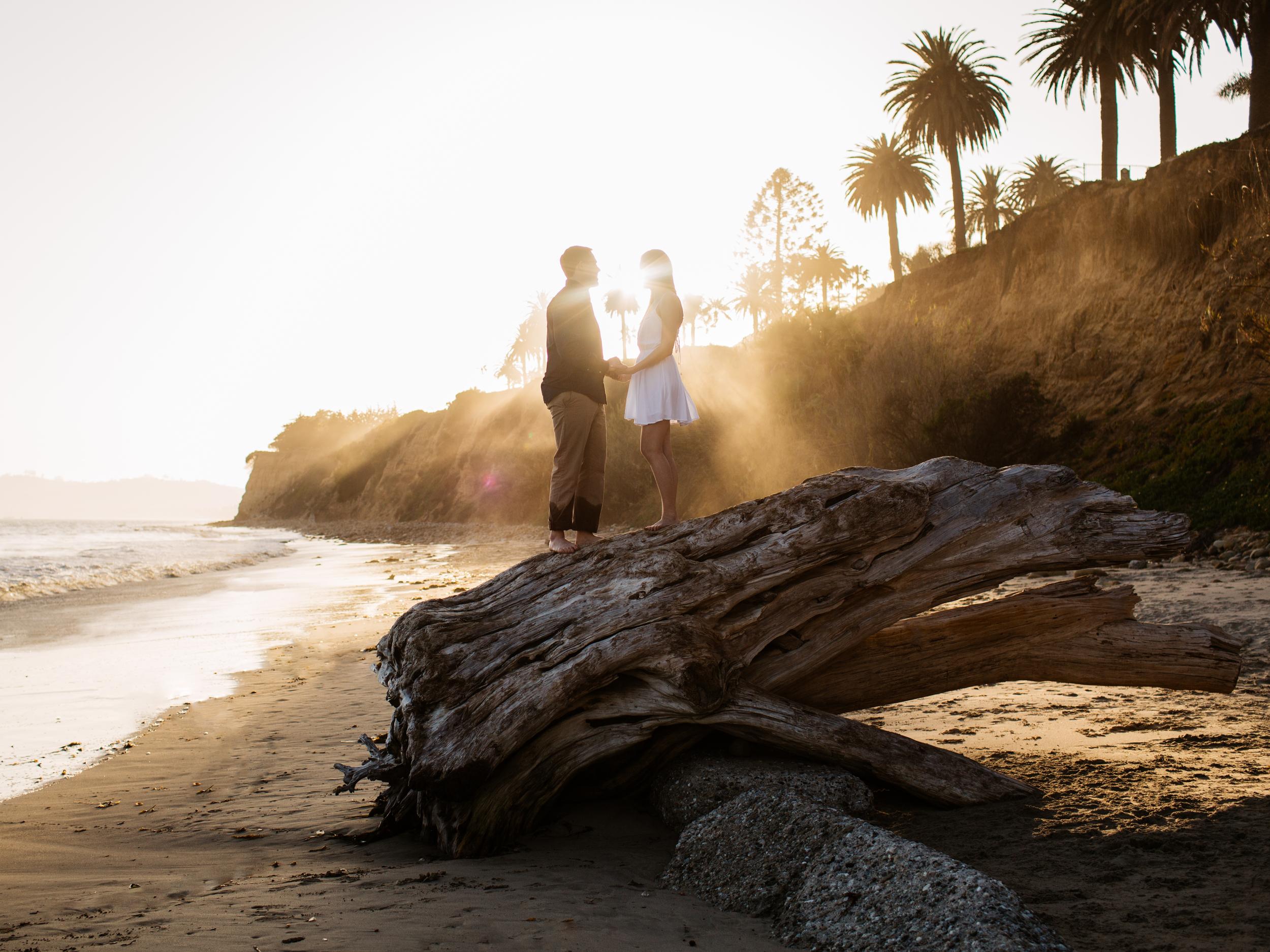 Bouman Engagement06.jpg