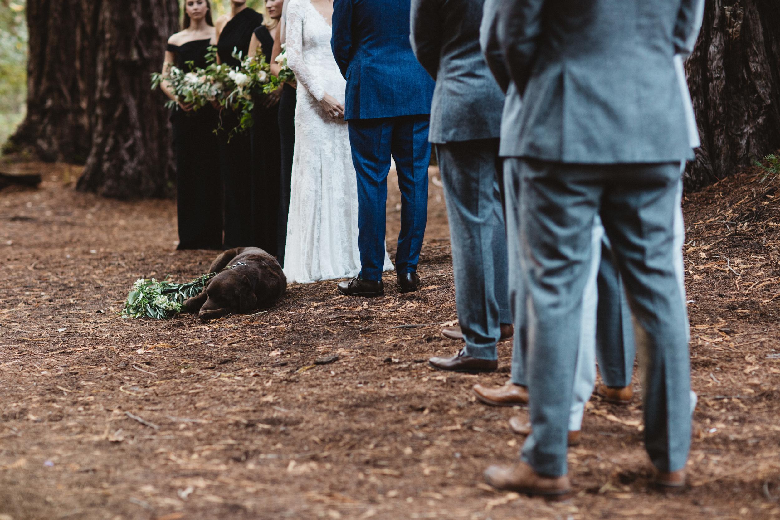 Northart Wedding Blog-37.jpg