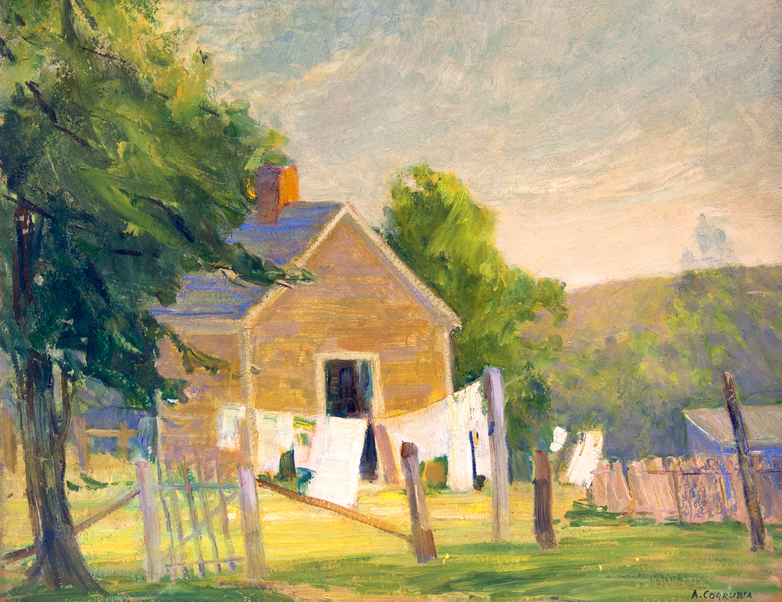 Clothesline in Summer