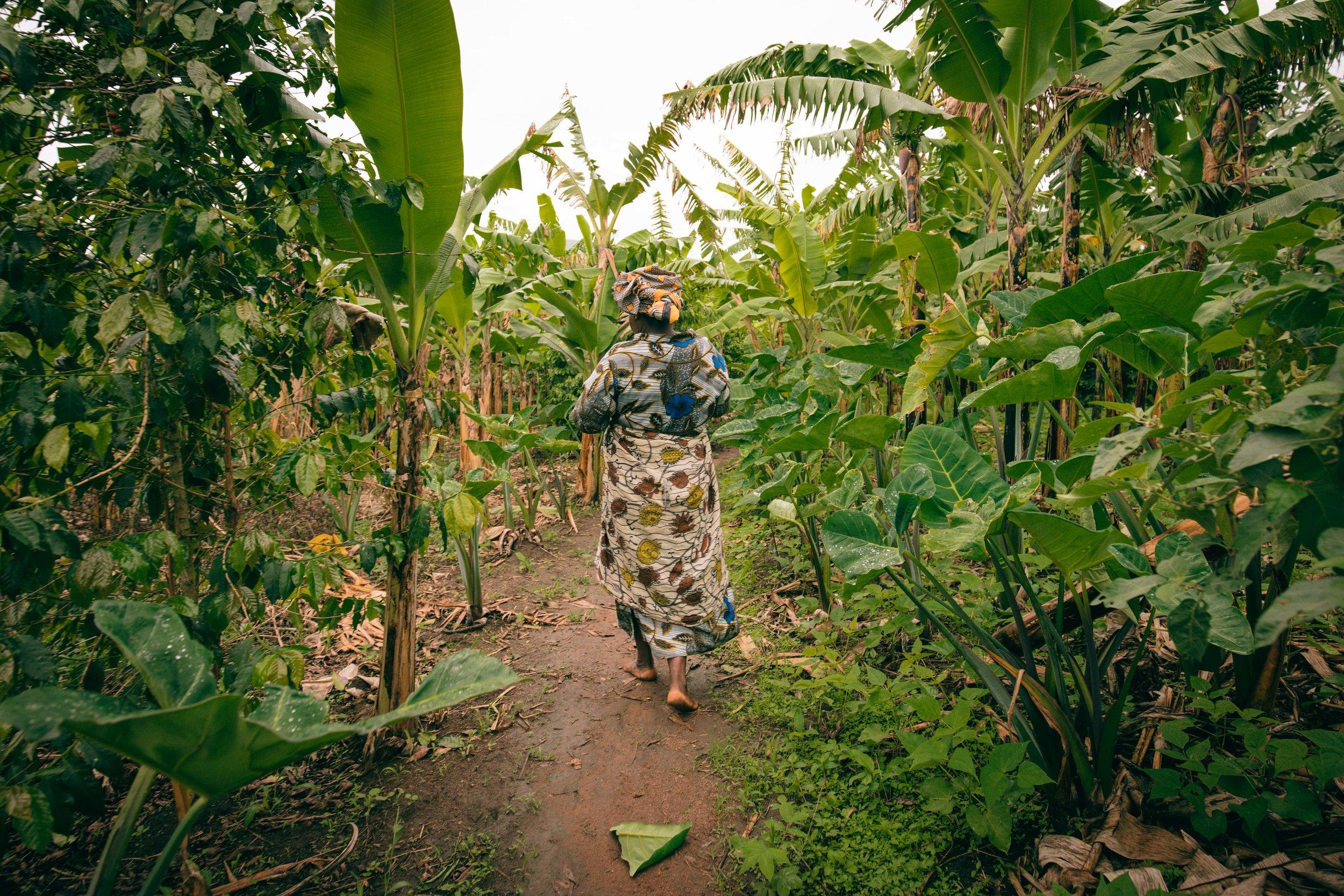 uganda-4.jpg