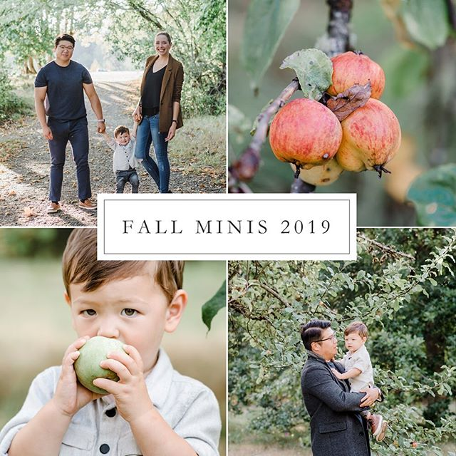 Celebrating my favorite time of the year with FALL MINIS! 🍃🍂🍁 $175 | 25 minute session | 25+ digital photographs  Limited spots available, DM me to reserve yours! ✨ . . . . . #naturallightphotographer #fallminisessions #fallminis #tacomafamilyphotographer #tacomaphotographer #tacomafamilyphotography #thefamilycollective #seattleportraitphotographer #seattlefamilyphotographer #lightandairyphotog #fallfamilyportraits #seattlekidsphotographer #tacomakidsphotographer #thehappynow #portraiture