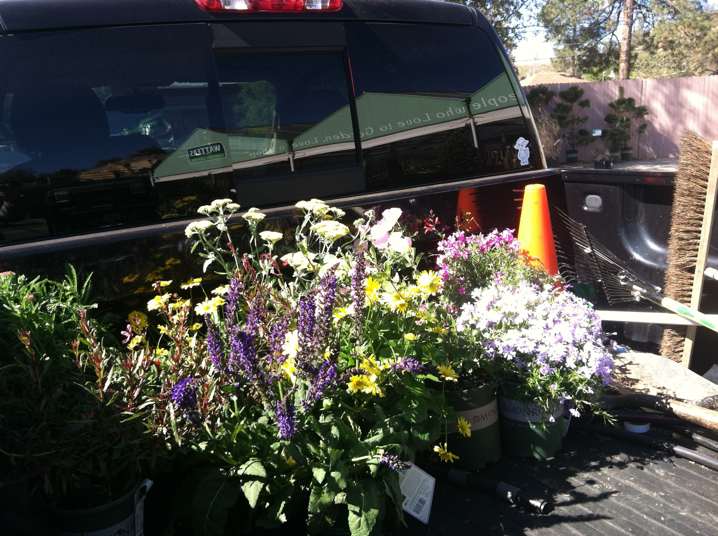 Picking up plants at the nursery