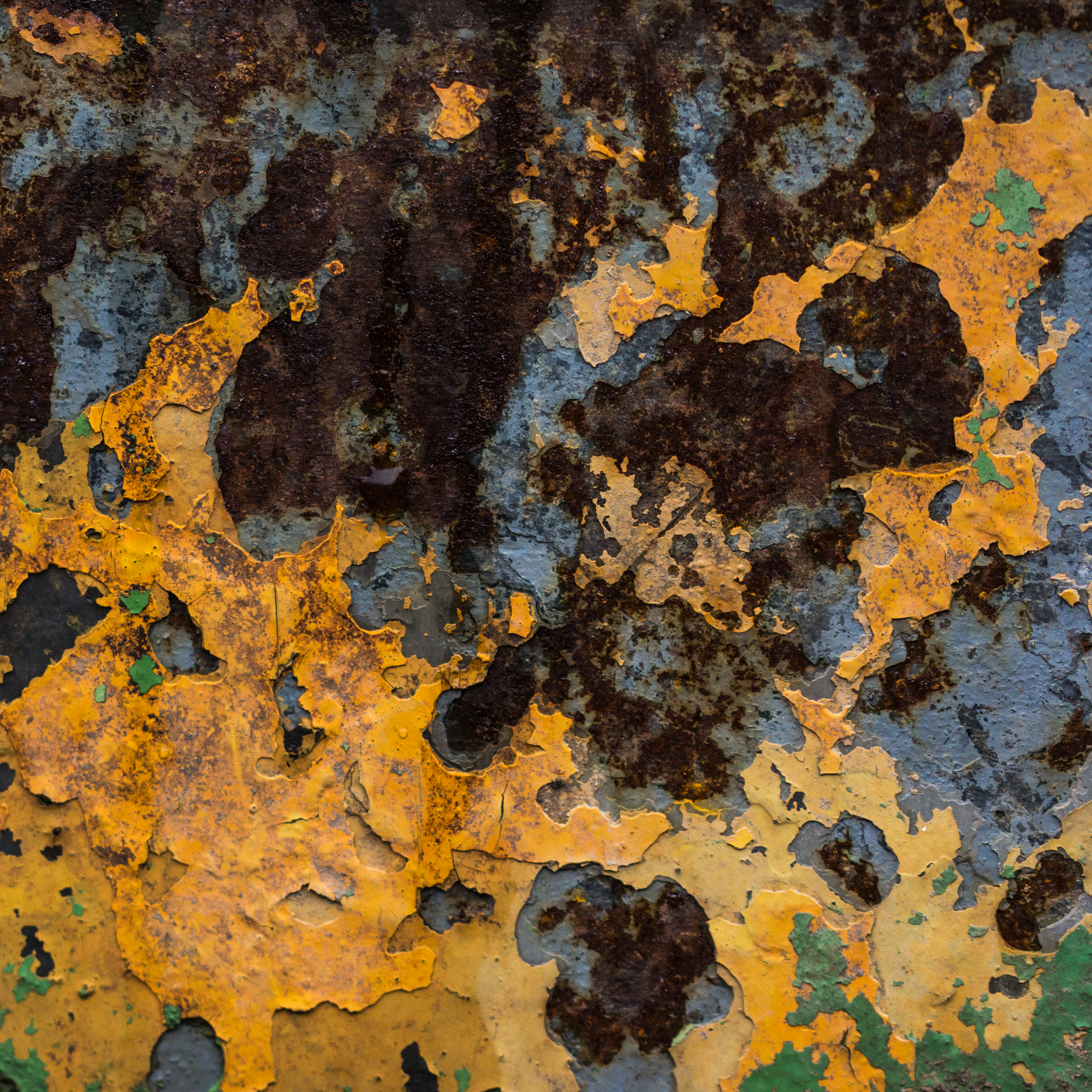 rust 8